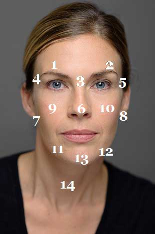 face_mapping