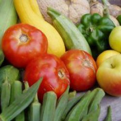 Sprout About – Bringing Fresh Produce Right to your Doorstep