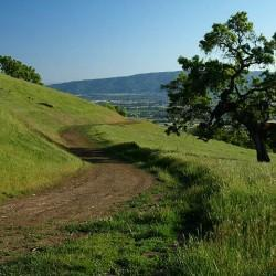 Hike of the Issue – San Ysidro Trail